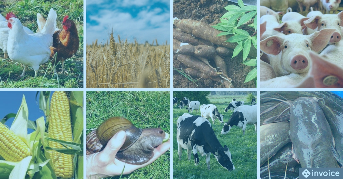 agricultural and farming businesses in nigeria
