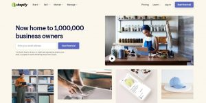 shopify website builder for businesses